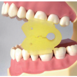 分瓣式口内支撑器